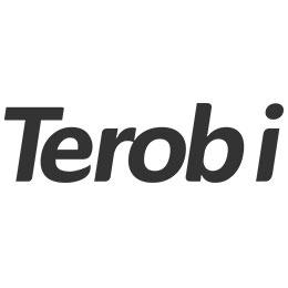 Terobi独立游戏组