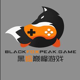 杭州黑狐巅峰软件技术有限责任公司